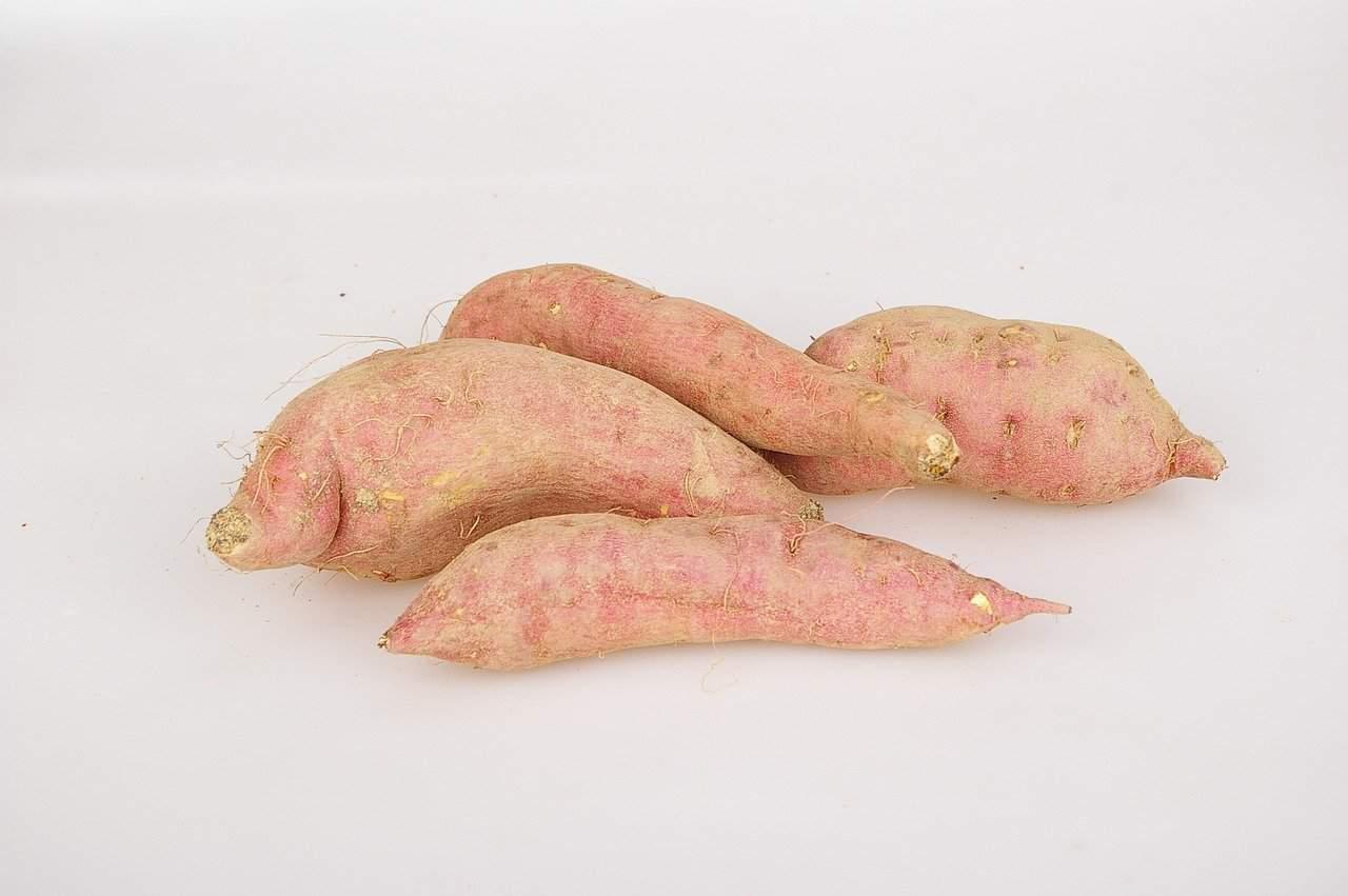 Batáty sladké brambory